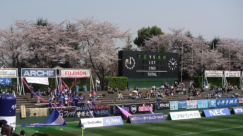 大宮公園サッカー場と桜