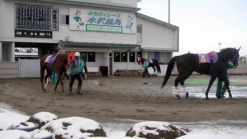 水沢競馬場パドック