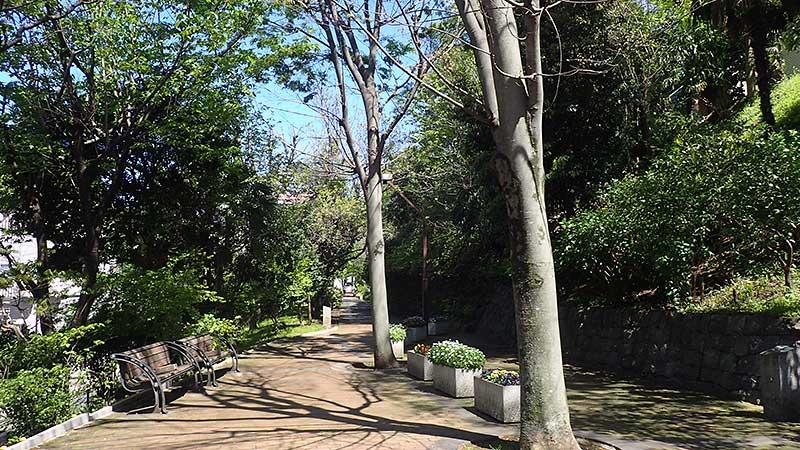 赤羽緑道公園入口付近