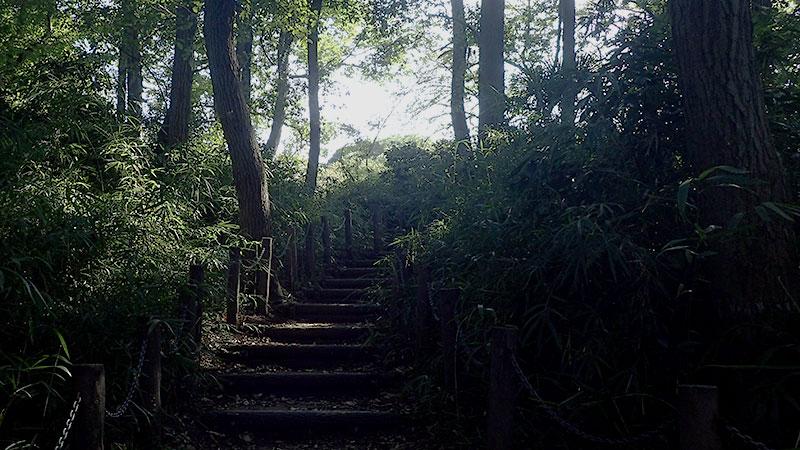 赤塚城本丸跡への道