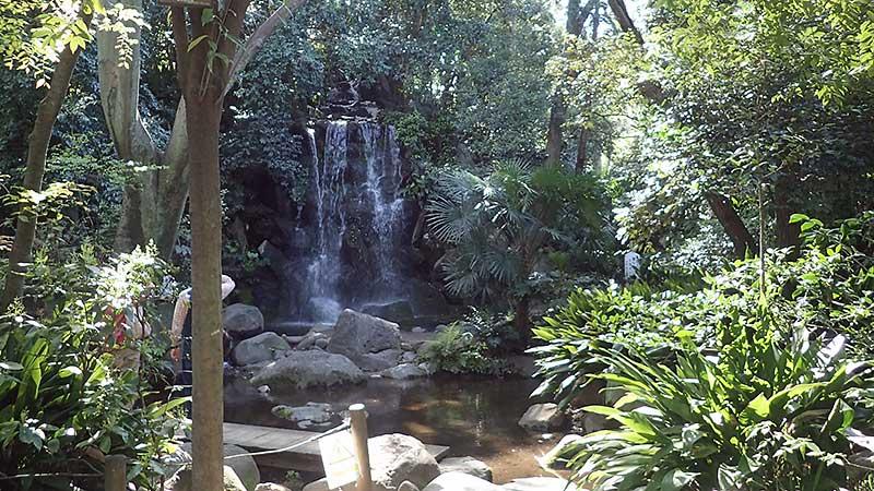 名主の滝公園滝の遠景