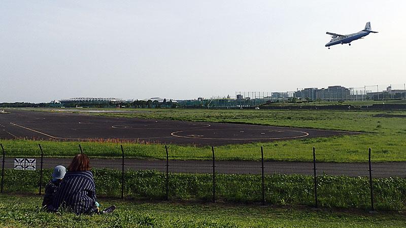 武蔵野の森公園展望の丘