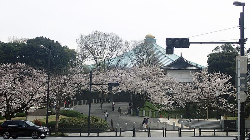 北の丸公園入口からみる武道館